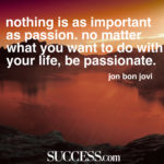 Quotes About Passion For Life Pinterest