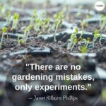 Quotes About Planting Vegetables