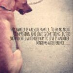 Quotes About Shelter Dogs Pinterest