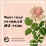 Rose Romantic Quotes Pinterest