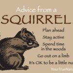 Secret Squirrel Quotes Facebook
