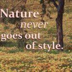Short Garden Quotes Tumblr