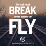 Short Quotes About Flying Facebook