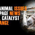 Slogan On World Animal Day Facebook