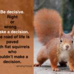 Squirrel Quotes Pinterest