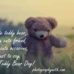 Teddy Bear Quotes