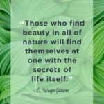 Thought On Nature Beauty Pinterest