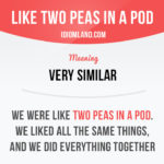 Two Peas In A Pod Similar Sayings