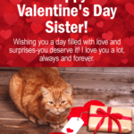 Valentine Message To Sister
