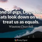 Winston Churchill Pig Quote Meaning Twitter
